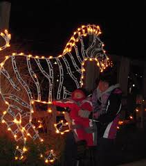 turtle back zoo lights upcoming events west essex now