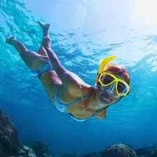 Cabo snorkeling tours with free transportation included
