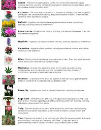 Poisonous Garden Flowers by March 2016 Pawsitive Results
