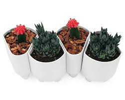 best plant pots ideas best home decor inspirations