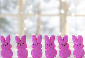 easter bunny candy free photo pink peeps peeps easter bunnies treat candy bunny max