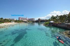 atlantis aquarium u2013 bahamas u2013 photo tour u2013 tank terrors