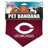 Uchicago Barnes And Noble Pet Accessories University Of Chicago Bookstore
