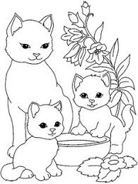 cat color pages printable free cute kitten