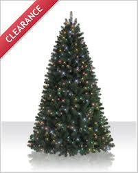5 5 foot northeastern spruce multi prelit tree