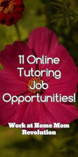Tutoring Job Resume 41 Best Teaching Tutoring Images On Pinterest Tutoring Business