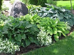 garden design garden design with shade garden plans with