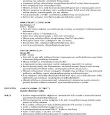 sle consultant resume template salesforce consultant resume education template student exle free