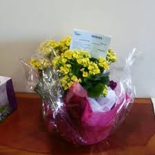 i800 flowers 1 800 flowers syosset 14 photos 18 reviews florists 397