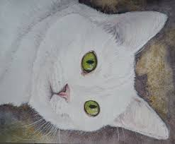 interview with cat artist halie french