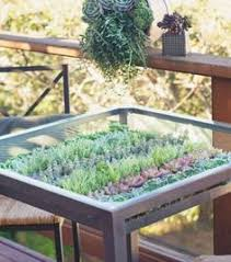 diy terrarium coffee table close up for the home pinterest