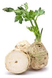 on celery seduction science and salad u2013 jane philpott u0027s food