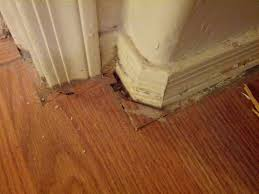 Laminate Flooring Installation Fabulous Flooring Installer Jobs How Not To Sand And Finish A Wood