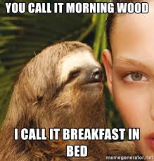 Morning Wood Meme - you call it morning wood i call it breakfast in bed the rape sloth
