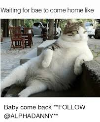 Baby Come Back Meme - waiting for bae to come home like dalphadanny baby come back