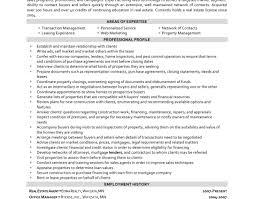 resume best professional resume amazing real estate resume