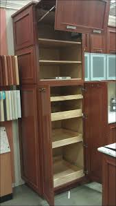 Kitchen Cabinet Rollouts Kitchen Cabinet Sliding Shelves Large Size Of Kitchenpull Out