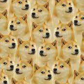 Doge Meme Wallpaper - doge meme backgrounds 1280 x meme best of the funny meme