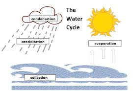 100 ideas water cycle coloring pages on www gerardduchemann com