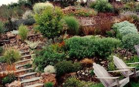 Backyard Hill Landscaping Ideas Download Backyard Hillside Landscaping Ideas Solidaria Garden