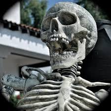 Halloween Skeleton Dance The Skeleton Dance I U0027m Not A Huge Fan Of Halloween But Ev U2026 Flickr