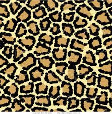 tiger print clipart real tiger pencil and in color tiger print
