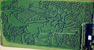 Pumpkin Patch Near Dixon Ca by 13 Of The Best Corn Mazes Of All Time Corn Mazes