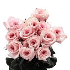 2 dozen roses globalrose 2 dozen pink roses vars 2 dozen pink roses the home depot