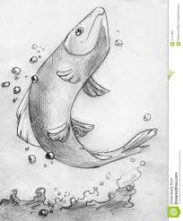 sketches of fish pictures in water best 25 koi fish designs ideas