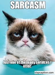 Grumpy Cat Meme No - sarcasm no purchase required grumpy cat pinterest sarcasm