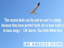 inspirational quote j m barrie the white birdlos