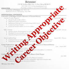 career objectives examples for freshers example template of