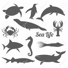 black and white vector illustration set of silhouettes of sea