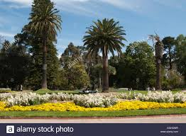 Botanical Gardens Melbourne St Kilda Botanical Gardens Melbourne Australia Stock Photo