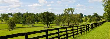 nc farms and land for sale offered by legacy farms of north carolina