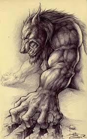 werewolf head drawing not my art the werewolves pinterest