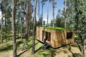 Modern Cabin by Dreamy Modern Cabin Has A Green Roof And Tree Inside Curbed