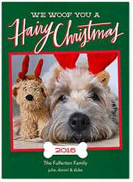 holiday cards featuring your cat or dog fun design ideas u0026 coupons