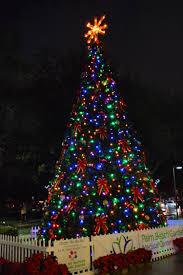 time to shine palm gardens tree lighting is tomorrow