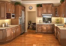 updated kitchen ideas updating oak kitchen cabinets best kitchen gallery rachelxblog