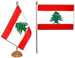 cours cuisine libanaise cours de cuisine libanaise vendredi 18 janvier sofia accueil