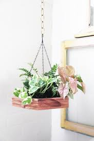 diy hexagon hanging planter jungalowjungalow