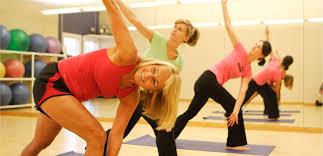 Teh Fitne fitness