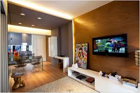 apartment marvellous apartment ideas for guys decor inexpensive