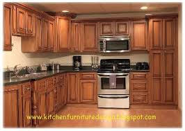 wood kitchen cabinets modern wood kitchen cabinets decorating clear
