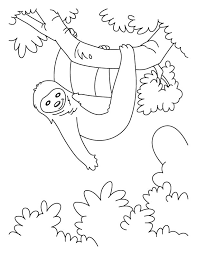 sloth coloring page sloth coloring pages download free hanging