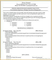 hybrid resume template word hybrid resume template word all best cv resume ideas