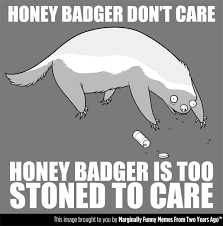 Honeybadger Meme - the real reason honey badger don t care imgur