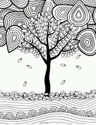coloring pages for adults tree 408 best adult colouring trees leaves landscapes images