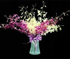 Orchid Flower Arrangements Dendrobium Orchid Flower Spray Arrangements Aloha Hawaiian Flowers